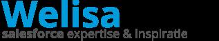 www.welisa.nl Data analyse analytics visualisatie visualisation Tableau PowerBI CRM Microsoft Dynamics Salesforce Automation Business Intelligence